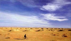 velo-desert