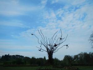 arbre-aux-oiseaux